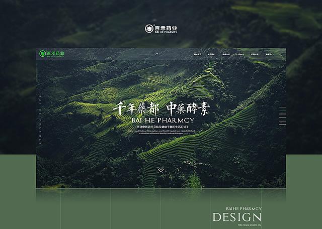 江西百禾药业产品官网开发设计